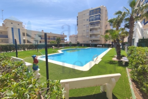 Apartment - Long Rental Period - Arenales del Sol - Arenales del Sol