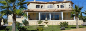 villa - For Sale - Los Montesinos - Los Montesinos